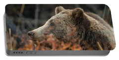 Grizzly Bear Portrait In Fall Portable Battery Charger