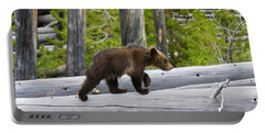 Grizzly Cub Portable Battery Charger
