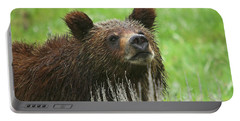 Portable Battery Charger featuring the photograph Grizzly Cub by Steve Stuller