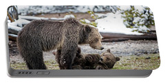 Grizzly Cub With Mother Portable Battery Charger