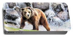 Grizzly Falls Portable Battery Charger by Steve McKinzie
