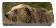 Grizzly Hidden In The Brush Portable Battery Charger