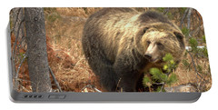 Grizzly In The Teton Forest Portable Battery Charger