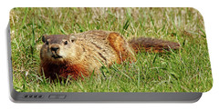 Groundhog In The Grass Portable Battery Charger