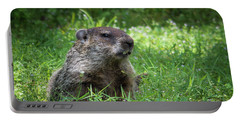 Groundhog Posing  Portable Battery Charger