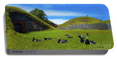 Group Of Birds Resting In The Bright Green Grass. Portable Battery Charger