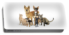 Group Of Cats And Dogs Looking Up On White Portable Battery Charger