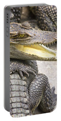 Group Of Crocodiles Portable Battery Charger
