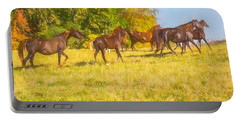 Group Of Morgan Horses Trotting Through Autumn Pasture. Portable Battery Charger