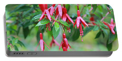 Portable Battery Charger featuring the photograph Growing In Red And Purple by Laddie Halupa