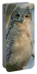 Growing Into A Great Horned Owl Portable Battery Charger