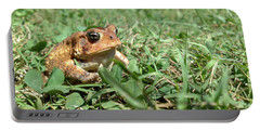 Portable Battery Charger featuring the photograph Grumpy Toad by Liza Eckardt