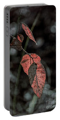 Portable Battery Charger featuring the photograph Grungy Leaves by Elaine Teague