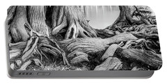 Guadalupe Bald Cypress In Black And White Portable Battery Charger