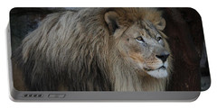 Portable Battery Charger featuring the photograph Guard Duty - Lion by Debi Dalio