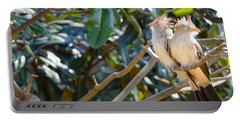 Portable Battery Charger featuring the photograph Guira Cuckoo by Donna Brown