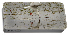 Gull Fishing 01 Portable Battery Charger