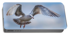 Gull Hover In Gray Portable Battery Charger