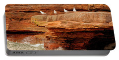 Gulls On Outcropping Portable Battery Charger