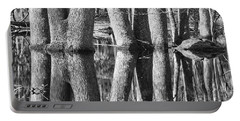 Portable Battery Charger featuring the photograph Gum Swamp by Geraldine DeBoer