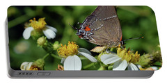 Hairstreak Butterfly Portable Battery Charger