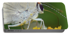 Hairstreak Closeup Portable Battery Charger