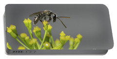 Halictid Bee - Lasioglossum Discum Portable Battery Charger by Jivko Nakev