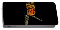 Portable Battery Charger featuring the photograph Halloween Pennant Dragonfly .png by Al Powell Photography USA