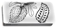 Hand Drawn Of Ripe Soursop Fruit On White Background Portable Battery Charger