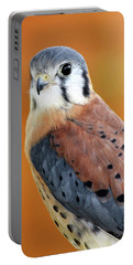 Handsome American Kestrel Portable Battery Charger
