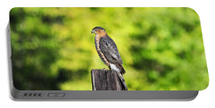 Portable Battery Charger featuring the photograph Handsome Hawk by Al Powell Photography USA