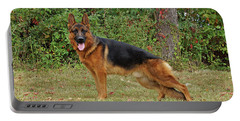 Handsome Rocco Portable Battery Charger