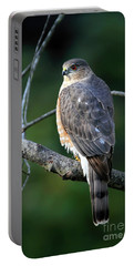 Handsome Sharp Shinned Hawk Portable Battery Charger