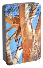 Portable Battery Charger featuring the photograph Hanging Around, Yanchep National Park by Dave Catley