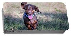 Happy Dachshund Portable Battery Charger by Stephanie Hayes