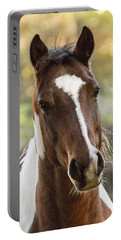 Happy Horse Portable Battery Charger