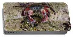 Happy Little Crab Portable Battery Charger
