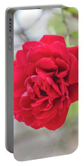 Portable Battery Charger featuring the photograph Happy Red Flower by Raphael Lopez