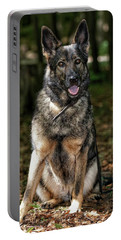 Portable Battery Charger featuring the photograph Happy Roxy by Nikki McInnes