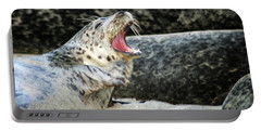 Harbor Seal Portable Battery Charger by Anthony Jones
