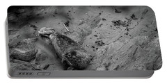 Harbor Seal Pup Monochrome  Portable Battery Charger