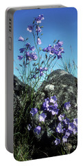 Portable Battery Charger featuring the photograph Harebells by Phil Banks