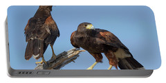 Harris Hawks Portable Battery Charger