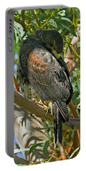 Portable Battery Charger featuring the photograph Harris's Preening V09 by Mark Myhaver