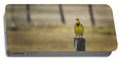 Have Audience Will Sing Portable Battery Charger by Belinda Greb