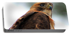 Portable Battery Charger featuring the photograph Hawk by Bruce Patrick Smith