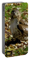 Hawk Falling Leaves Portable Battery Charger