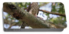 Hawk On A Branch Portable Battery Charger