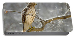 Hawk On Lookout Portable Battery Charger by George Randy Bass