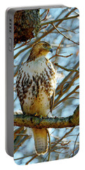 Hawk Portable Battery Charger